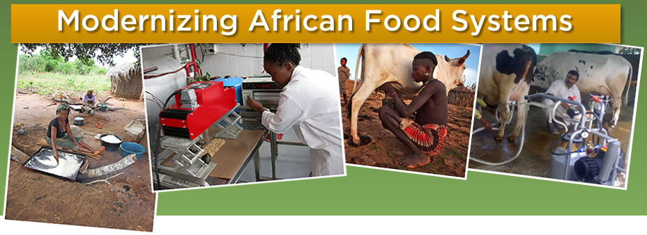 Modernizing African Food Systems